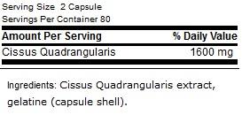 GN-Cissus1